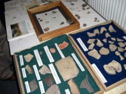 Some of the finds on display